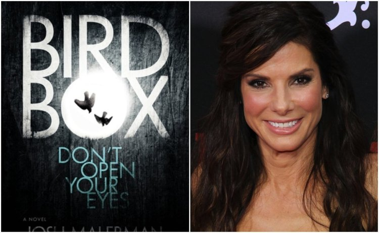 Sandra Bullock Netflix Bird Box Movie Josh Malerman