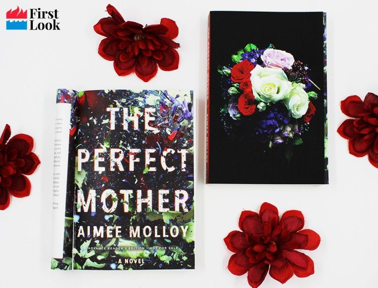 HCC First Look The Perfect Mother by Aimee Molloy